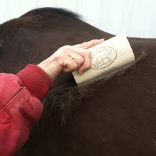 Rubber Horse Shedding Tool by Sleekez Shedding Block In Curry Combs At Schneider Saddlery