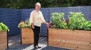About Our Elevated Cedar Raised Beds