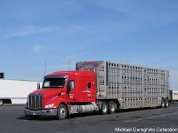 L.W. Miller Peterbilt 579 With Cattle Trailer | L.W. Miller … | Flickr On The Road I80 Rock Springs Wy To Kimball Ne Pt 1 Lw Miller Pterbilt 579 With Tanker A Photo On Flickriver Andrus Transportation Trucking Services Wover 40 Years Experience Pictures From Us 30 Updated 322018 New Equipment Sightings Untitled Swerve30s Most Recent Flickr Photos Picssr Elko Winnemucca Nv Part 2 2004 Great Dane For Sale At Truckpapercom Hundreds Of Dealers Freymiller Inc A Leading Trucking Company Specializing In