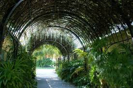The McKee Botanical Gardens – Peace and Beauty in the City