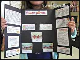 The 25 Best Good Science Fair Projects Ideas On Pinterest
