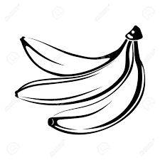 Black silhouette of bananas isolated on white Vector illustration Stock Vector