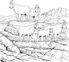 Click To See Printable Version Of Mountain Goat Herd Coloring Page