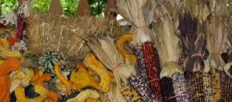 Sarasota Pumpkin Festival 2017 by October Sarasota Events Calendar