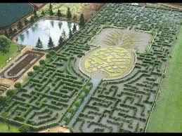 World s st Garden Maze Wahiawa Hawaii US