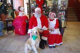 Stew Leonards Christmas Trees Farmingdale by Events Around The Town Of Babylon This Weekend Dec 9 To 11 2016