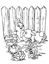 2 Cute Rabbits In Garden Coloring Page
