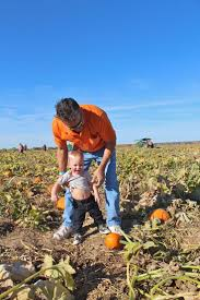 Marana Pumpkin Patch Festival Marana Az by 64 Best About Town Images On Pinterest Freedom Diving And Mountain