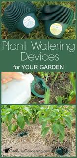 Plant Watering Devices For Your Garden
