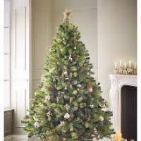 5ft Christmas Tree Asda by Catchy Collections Of Asda Christmas Trees Fabulous Homes