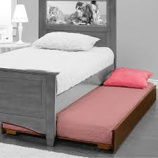 Bed Frames Sears by Bedroom Lightheaded Beds Sears Beds Kmart Rollaway Bed
