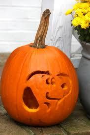Cute Halloween Carved Pumpkins by 107 Best Halloween Images On Pinterest Halloween Pumpkins