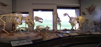 agate fossil beds national monument celebrates 50th anniversary