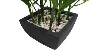 khevga deko bambus pflanze im topf