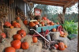 Pumpkin Patch Parker County Texas by Grant Farms U2013 Memories Await U2026