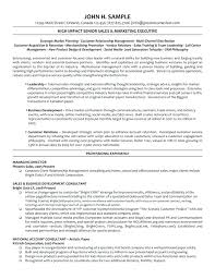 Banking Executive Resume Manager Template 2 Sales