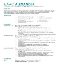 Resume Templates Training And Development Human Resources Contemporary Wonderful Hr Headline Examples Format In Word Skills