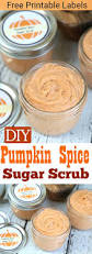 Pumpkin Spice Playdough Pinterest by 311 Best Craft Ideas Images On Pinterest Diy Craft Projects And