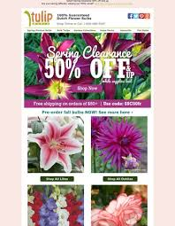 tulip world sunday deal mixed hyacinths 0 40 per bulb