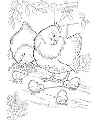 Farm Animal Chicken Coloring Page