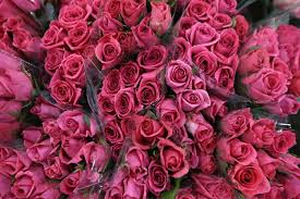 Halloween Express Richfield Mn by Best Florists For Valentine U0027s Day Flowers In Minnesota Wcco