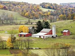 Places To Visit In Amish Country Ohio - Discover Ohio To Go Portable Amish Barns For Sale 2017 Prices And Photos Old Barn On County Road In Holmes Ohio Stock Photo Blog Beachy Columbus Buildings Sheds Horse Fisher Barn Images 224 Mcq Travels Mast Mini Garden Studio Home Springtime Country Is A Beautiful Thing Click Here For Pole Builder Lester Awesome Looking Premier Dutch Goat Shed Cstruction Millersburg