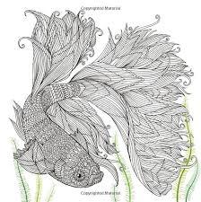 The Aquarium Colouring Books Amazoncouk Richard Merritt