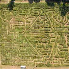 Portland Pumpkin Patch Corn Maze by Corn Maze Round Up Nw Kids Magazine