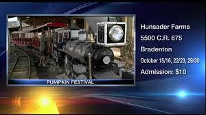 Sarasota Pumpkin Festival 2017 by Hunsader Farms Prepares For Pumpkin Festival Youtube