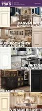 Schuler Cabinets Vs Kraftmaid by Schuler Cabinet Reviews Oropendolaperu Org