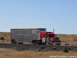 100 Jkc Trucking Michael Cereghino Avsfan118s Most Recent Flickr Photos Picssr