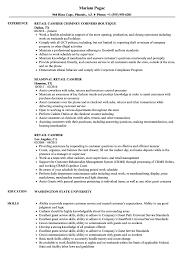 Download Retail Cashier Resume Sample As Image File