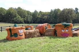 Best Pumpkin Farms In Maryland by Montpelier Farms Pumpkin Patch And Corn Maze Maryland Haunted Houses