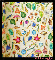 Johanna Basford Coloring Books Colouring Book Art Prismacolor Ivy Tips