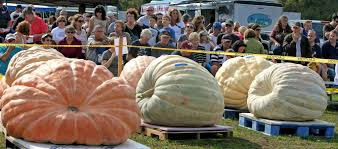 Largest Pumpkin Contest Winners by Fall Guide Warren U0027s Annual Giant Pumpkin Contest Attracts Thousands