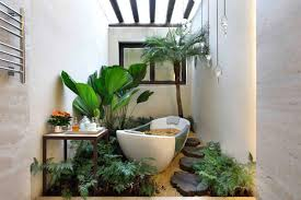 Small Plants For The Bathroom by 16 Plants For Bathroom With No Natural Light Small Bathroom