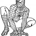 Spiderman Free Online Coloring Games