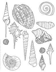 100 Sea Shell Design This Is A Free Seashell Design Coloring Page That Anyone May