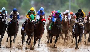 Pumpkin Patch Irvine Jeffrey by Best Places To Watch The Kentucky Derby In L A Cbs Los Angeles