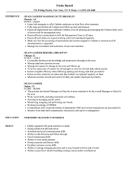 Download Head Cashier Resume Sample As Image File