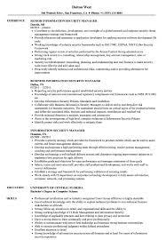 Download Information Security Manager Resume Sample As Image File