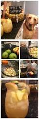 Pumpkin Pie Moonshine Crock Pot by 25 Best Apple Pie Vodka Ideas On Pinterest Apple Pie Moonshine