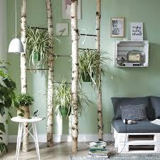 zimmerpflanze birkenstamm deko wohnzimmer schlafzimmer grün