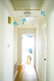 hallway lighting fixtures ideas contemplative cat