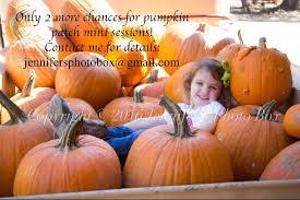 Pumpkin Patch Wetumpka Alabama by Dream Field Farms Inc Home Facebook