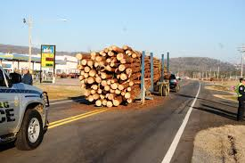 100 Logging Truck Accident Thursday Sending Logs Across The Roadway On County Road 41 Near