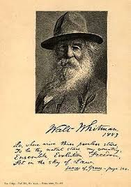 walt whitman the wound dresser meaning leaves of grass