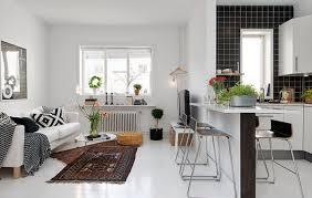 wohnzimmer auf der einen seite und kleine einbauküche auf