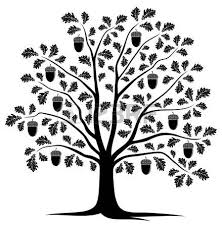 11 014 Oak Tree Silhouette Cliparts Stock Vector And Royalty Free