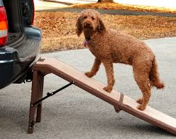 100 Dog Truck Ramp Best For Car Or SUV 2019 Reviews